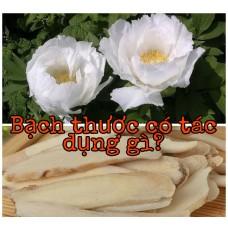 Cây Bạch Thược có tác dụng gì? - Loài hoa quý dành cho phái đẹp